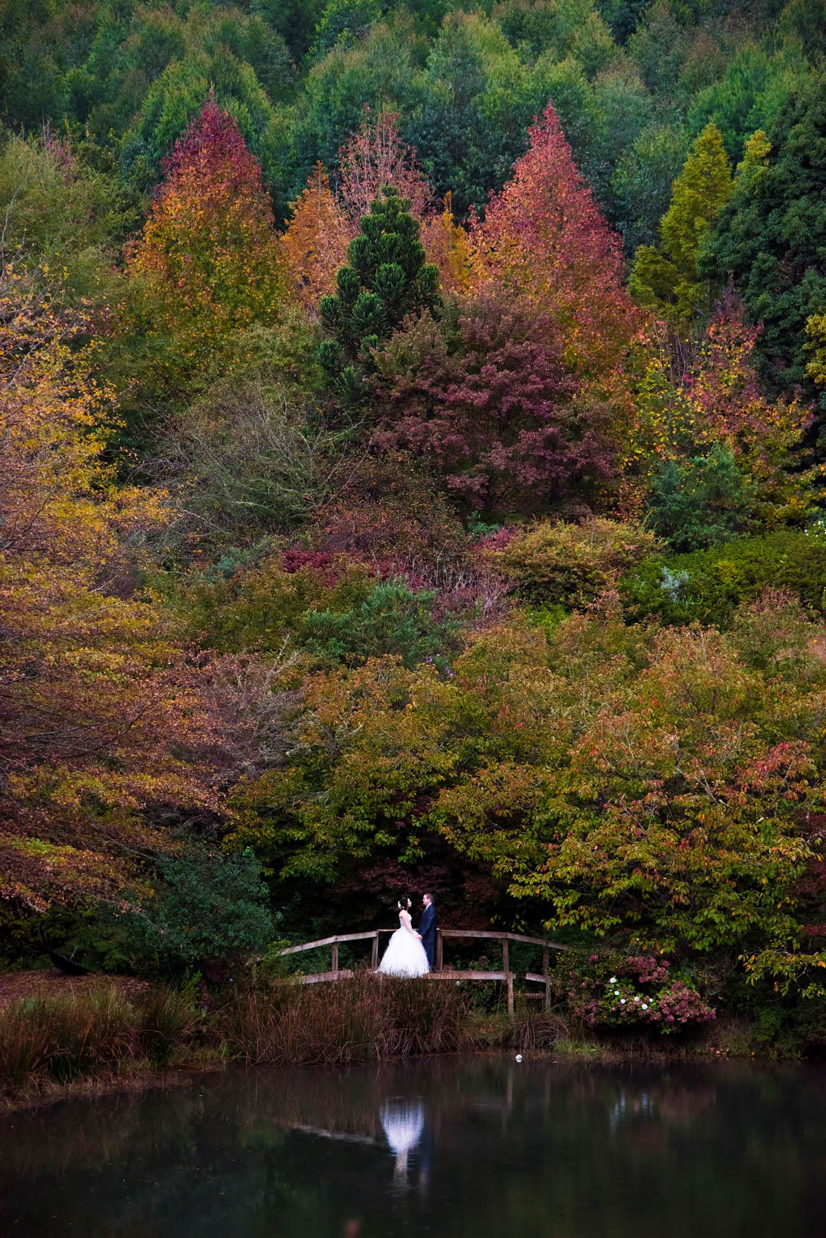 WJP_WeddingPhotos25